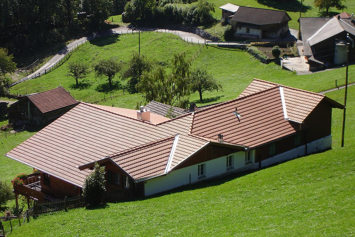 Fritz Dänzer Boltigen - Galerien Dach